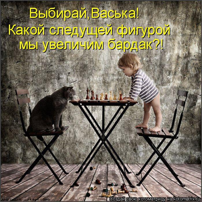 Котоматрица: Какой следущей фигурой Выбирай,Васька! мы увеличим бардак?!