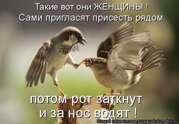 Котоматрица: Такие вот они ЖЕНЩИНЫ ! Сами пригласят присесть рядом потом рот заткнут и за нос водят !