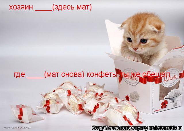 Котоматрица: хозяин ____(здесь мат)  где ____(мат снова) конфеты ты же обещал