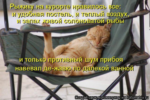 Котоматрица: Рыжику на курорте нравилось все:  и удобная постель, и теплый воздух,  и запах живой солоноватой рыбы и только противный шум прибоя  навевал
