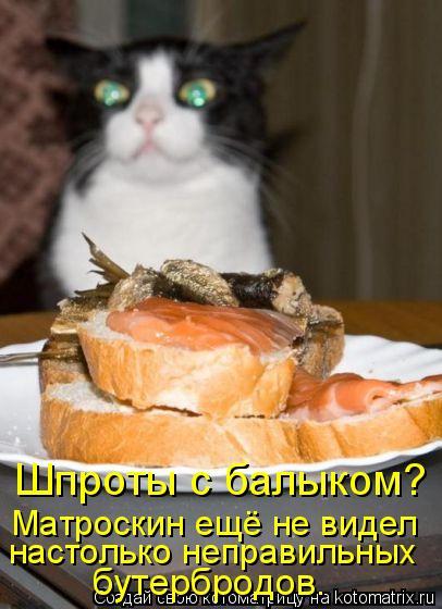 Котоматрица: Шпроты с балыком?  Матроскин ещё не видел  настолько неправильных  бутербродов.