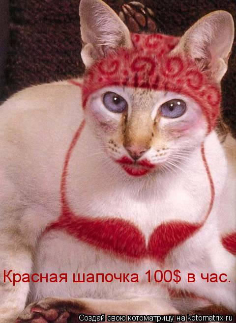 Котоматрица: Красная шапочка 100$ в час.