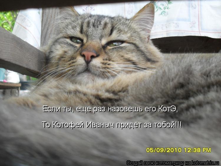 Котоматрица: Если ты, еще раз назовешь его КотЭ, То Котофей Иваныч придёт за тобой!!!
