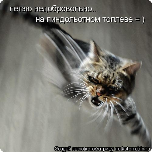Котоматрица: летаю недобровольно... на пиндольотном топлеве = )