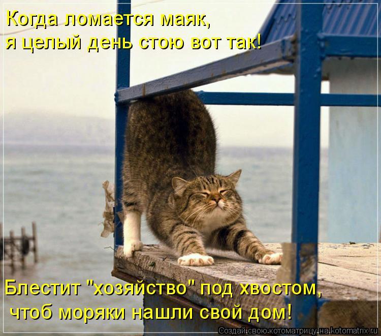 """Котоматрица: Когда ломается маяк,  я целый день стою вот так!  Блестит """"хозяйство"""" под хвостом,  чтоб моряки нашли свой дом!"""