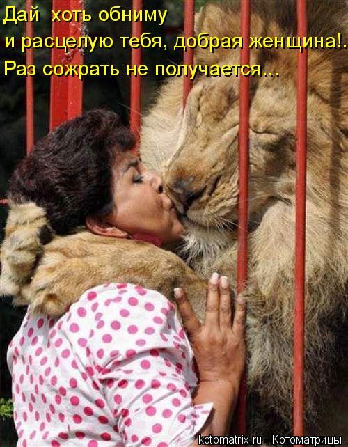 Котоматрица: Дай  хоть обниму  и расцелую тебя, добрая женщина!... Раз сожрать не получается...