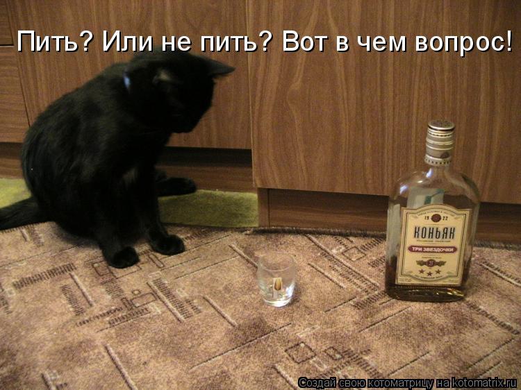 http://kotomatrix.ru/images/lolz/2010/05/16/575083.jpg