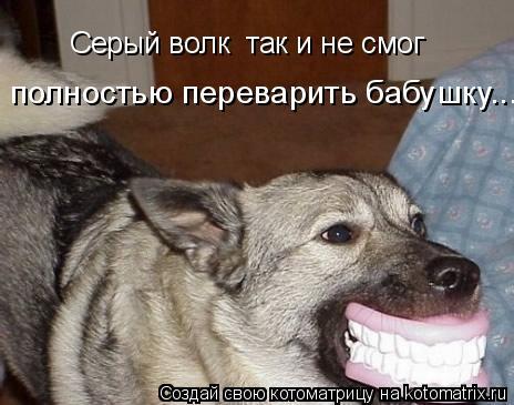 Котоматрица: Серый волк  так и не смог  полностью переварить бабушку...