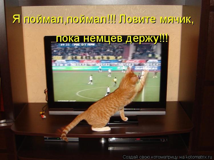 Котоматрица: Я поймал,поймал!!! Ловите мячик, пока немцев держу!!!