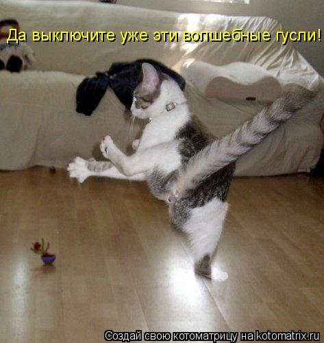 Котоматрица: Да выключите уже эти волшебные гусли!