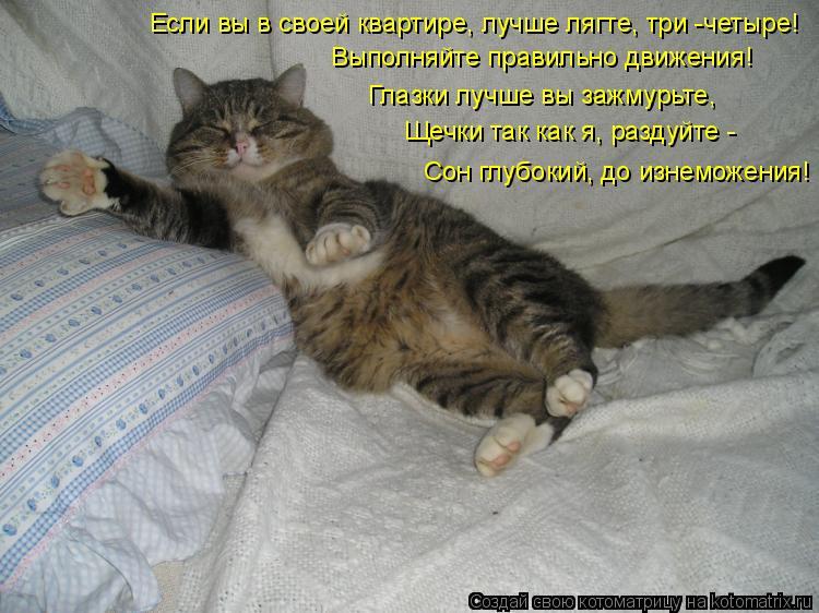 Котоматрица: Если вы в своей квартире, лучше лягте, три -четыре! Выполняйте правильно движения! Глазки лучше вы зажмурьте, Щечки так как я, раздуйте - Сон г