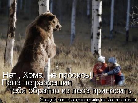 Котоматрица: Нет , Хома, не просись!! Папа не разрешил  тебя обратно из леса приносить