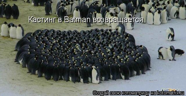 Котоматрица: Кастинг в Batman возвращается