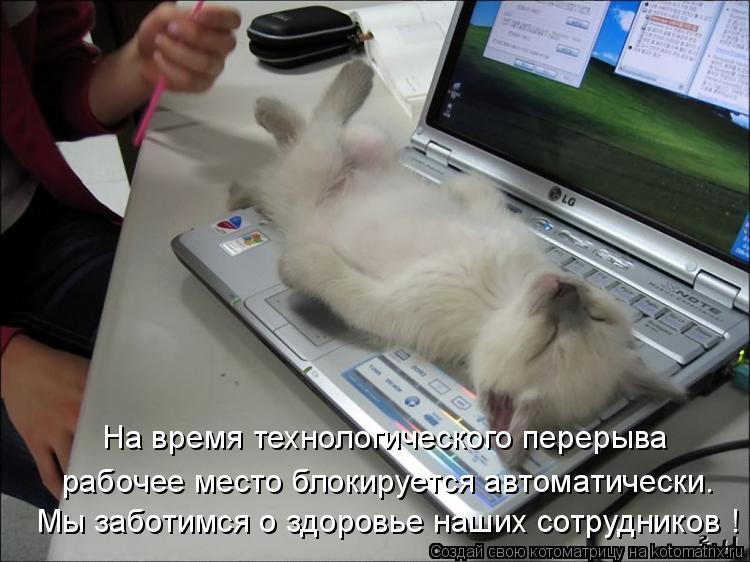 Котоматриця!)))) - Страница 6 577572