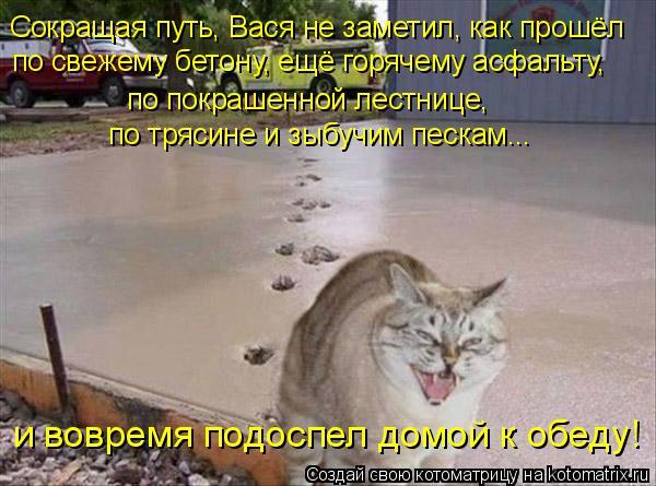 Котоматрица: Сокращая путь, Вася не заметил, как прошёл по свежему бетону, ещё горячему асфальту, по покрашенной лестнице,  и вовремя подоспел домой к обе