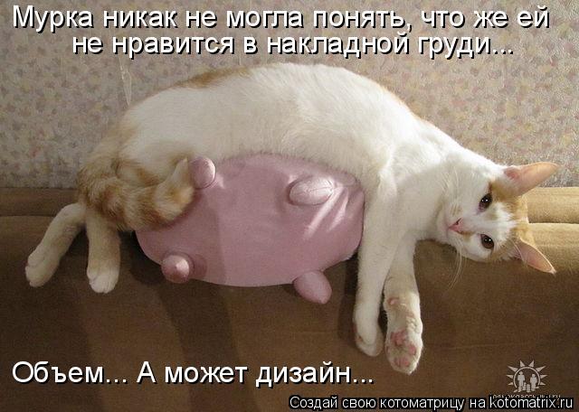 Котоматрица - Мурка никак не могла понять, что же ей не нравится в накладной груди..