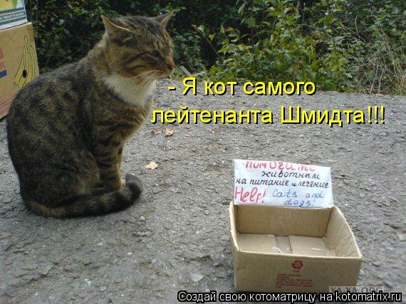 Котоматрица: - Я кот самого  лейтенанта Шмидта!!!