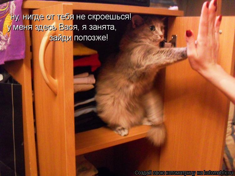 Котоматрица: ну, нигде от тебя не скроешься! у меня здесь Вася, я занята, зайди попозже!