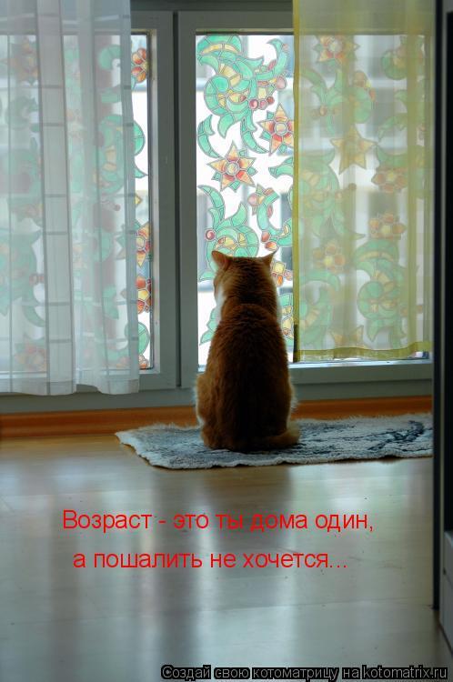 Возраст - это ты дома один, а пошалить не хочется...