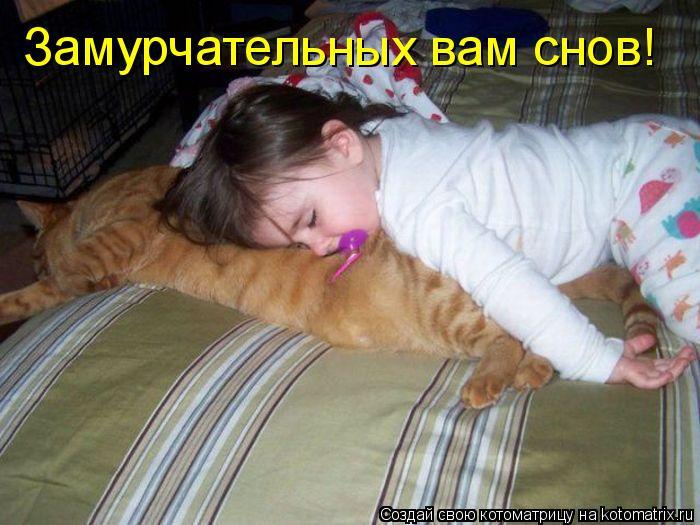 Котоматрица: Замурчательных вам снов!