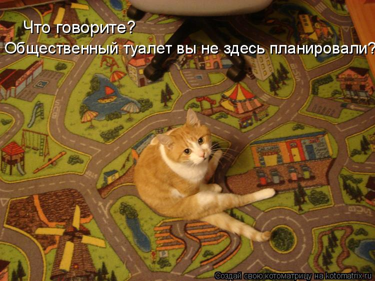 Котоматрица: Что говорите? Общественный туалет вы не здесь планировали?