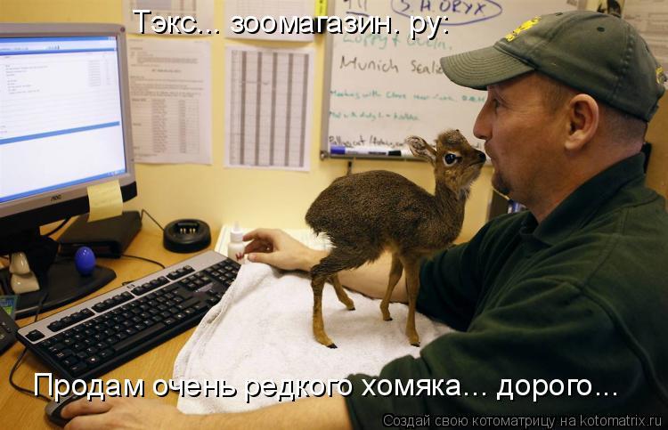 Котоматрица: Тэкс... зоомагазин. ру: Продам очень редкого хомяка... дорого...