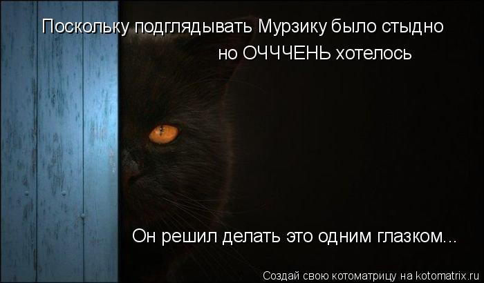 Котоматрица: Поскольку подглядывать Мурзику было стыдно но ОЧЧЧЕНЬ хотелось Он решил делать это одним глазком...