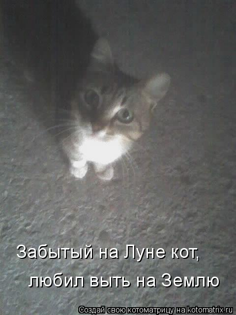 Котоматрица: Забытый на Луне кот, любил выть на Землю