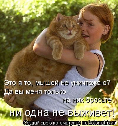 Котоматрица: Это я то, мышей не уничтожаю?  Да вы меня только   на них бросьте,  ни одна не выживет!