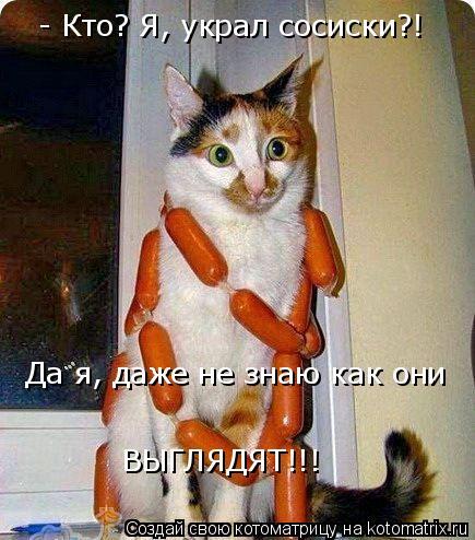 Котоматрица: - Кто? Я, украл сосиски?! Да я, даже не знаю как они ВЫГЛЯДЯТ!!!