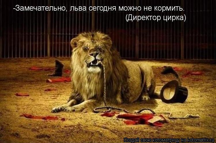 Котоматрица: -Замечательно, льва сегодня можно не кормить. (Директор цирка)