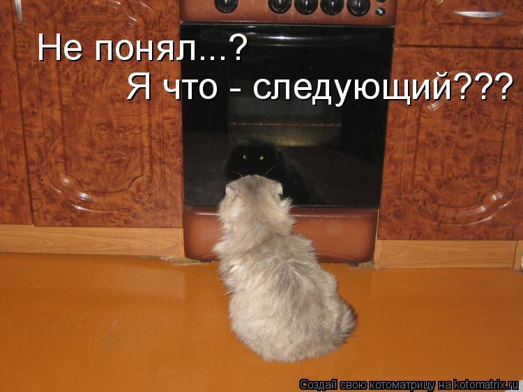 Котоматрица: Не понял...? Я что - следующий???