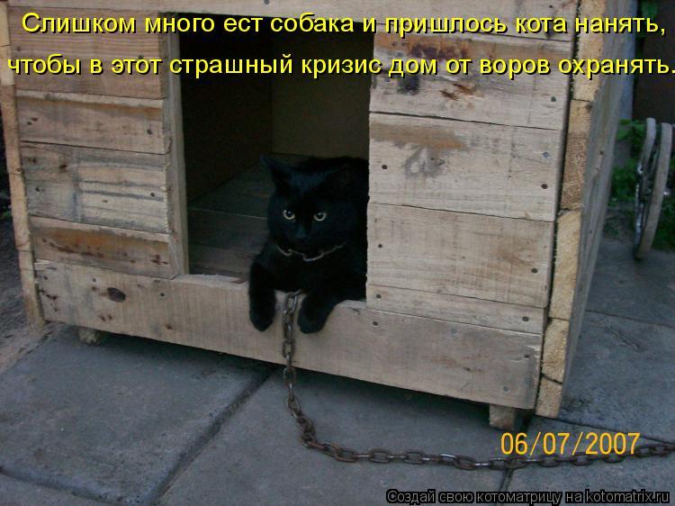 Котоматрица: Слишком много ест собака и пришлось кота нанять,  чтобы в этот страшный кризис дом от воров охранять.