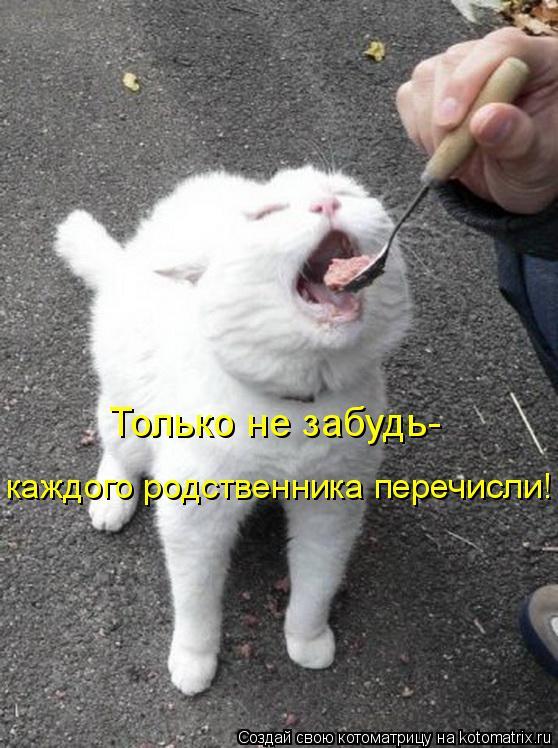 http://kotomatrix.ru/images/lolz/2010/05/24/582190.jpg