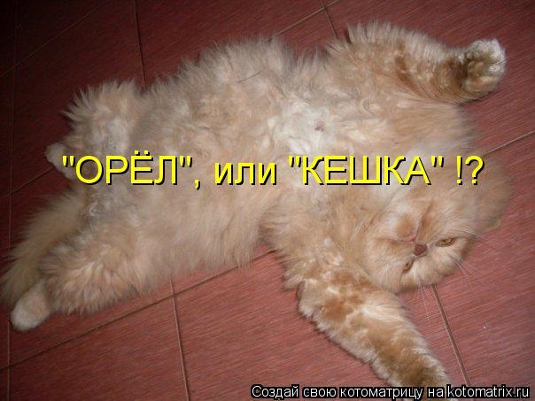 """Котоматрица: """"ОРЕЛ"""", или """"КЕШКА"""" !? .."""