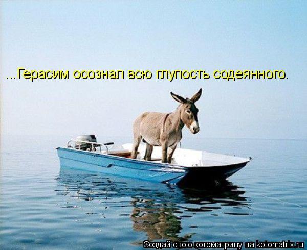 Котоматрица: ...Герасим осознал всю глупость содеянного.
