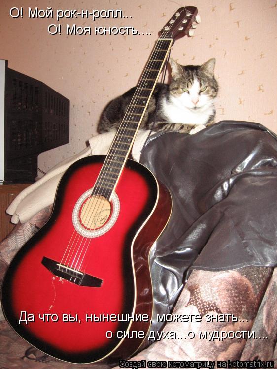 Котоматрица: О! Мой рок-н-ролл... О! Моя юность.... о силе духа...о мудрости.... Да что вы, нынешние, можете знать...