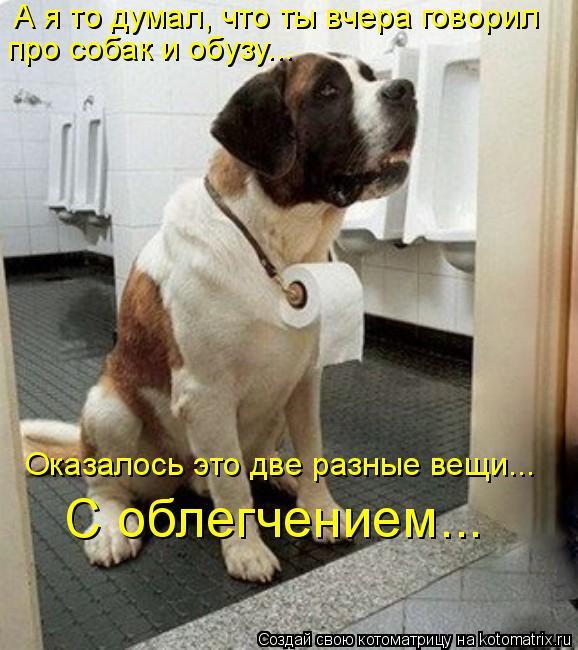 Котоматрица: А я то думал, что ты вчера говорил про собак и обузу…..  С облегчением….. Оказалось это две разные вещи…..