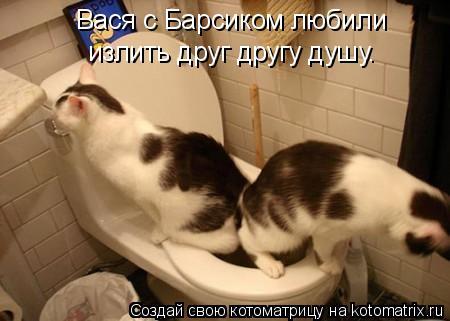 Котоматрица: Вася с Барсиком любили излить друг другу душу.