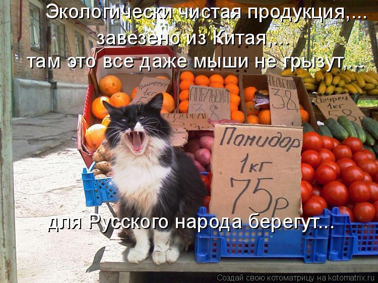 Котоматрица: завезено из Китая,... Экологически чистая продукция,... там это все даже мыши не грызут,... для Русского народа берегут…..