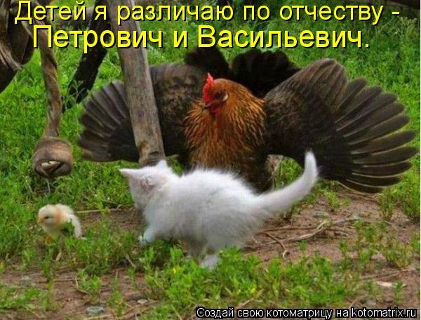 Котоматрица: Детей я различаю по отчеству -  Петрович и Васильевич.