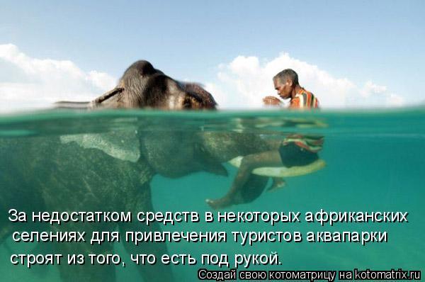 Котоматрица: За недостатком средств в некоторых африканских  селениях для привлечения туристов аквапарки  строят из того, что есть под рукой.