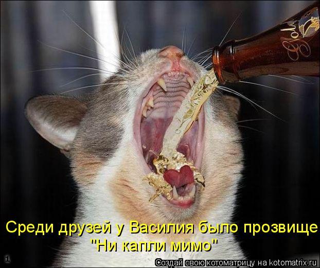 """Котоматрица - Среди друзей у Василия было прозвище """"Ни капли мимо"""""""