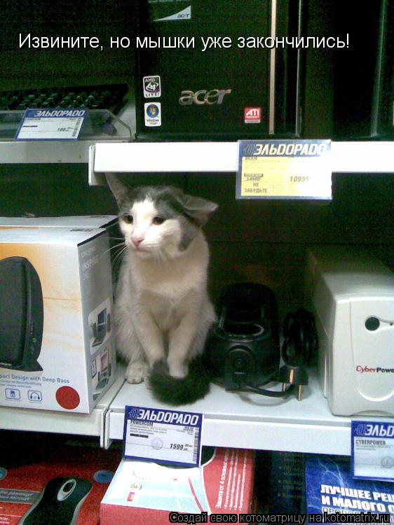 Котоматрица: Извините, но мышки уже закончились!