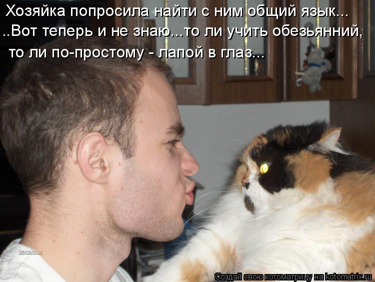 Котоматрица - Хозяйка попросила найти с ним общий язык... ..Вот теперь и не знаю...т