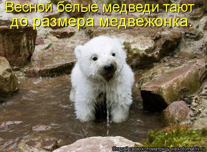http://kotomatrix.ru/images/lolz/2010/05/27/584975.jpg