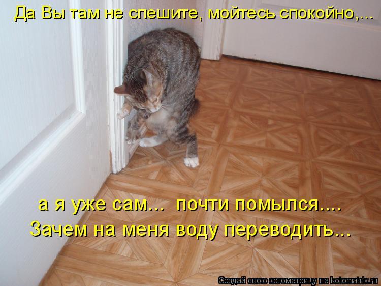 Котоматрица: Да Вы там не спешите, мойтесь спокойно,...  Зачем на меня воду переводить...  а я уже сам...  почти помылся....