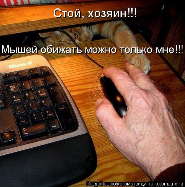 Котоматрица: Мышей обижать можно только мне!!! Стой, хозяин!!!