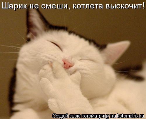 Котоматриця!)))) - Страница 5 585687