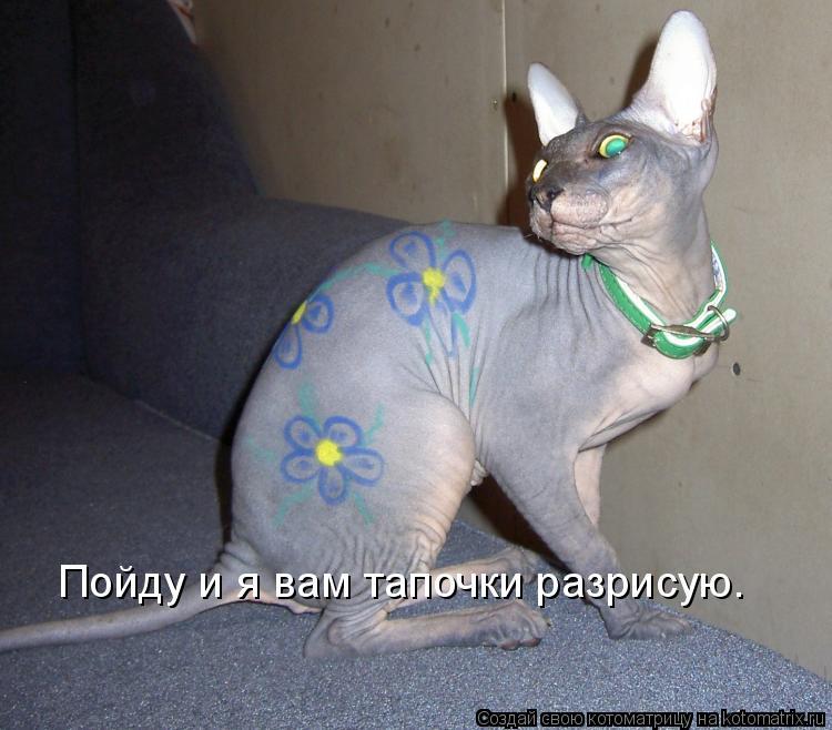 Котоматрица: Пойду и я вам тапочки разрисую.